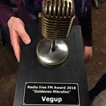 G7 Award 2018: Goldenes Mikrofon für Vegup